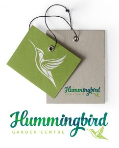 Hummingbird logo by Logo Design